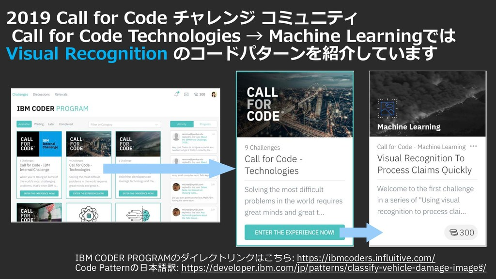 2019 Call for Code チャレンジ コミュニティ Call for Code T...