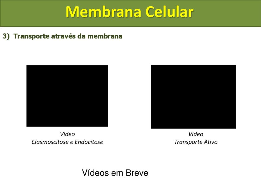 Membrana Celular 3) Transporte através da membr...