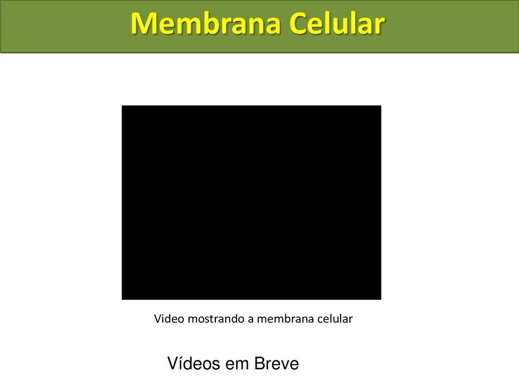 Membrana Celular Video mostrando a membrana cel...