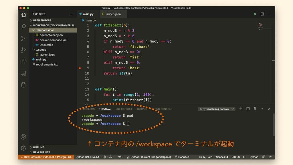 ↑ ίϯςφͷ /workspace Ͱλʔϛφϧ͕ىಈ