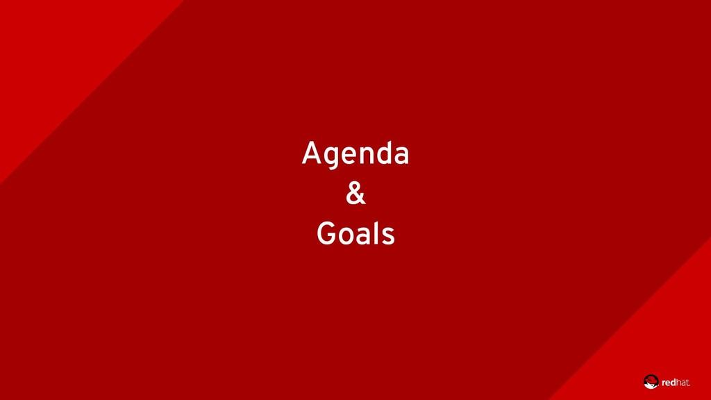 Agenda & Goals