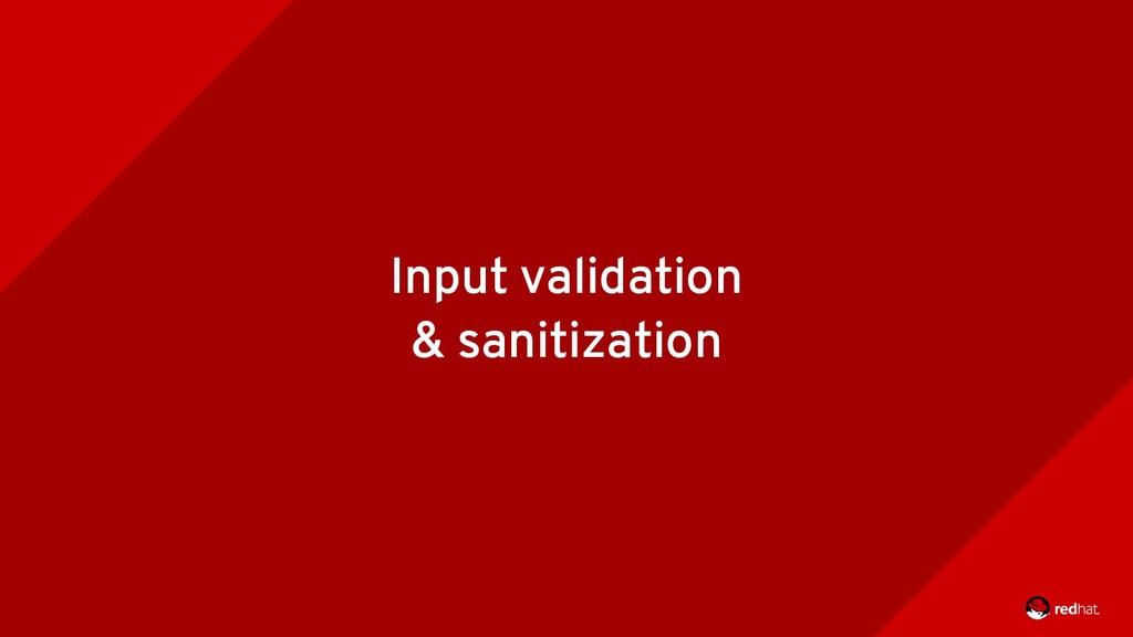 Input validation & sanitization