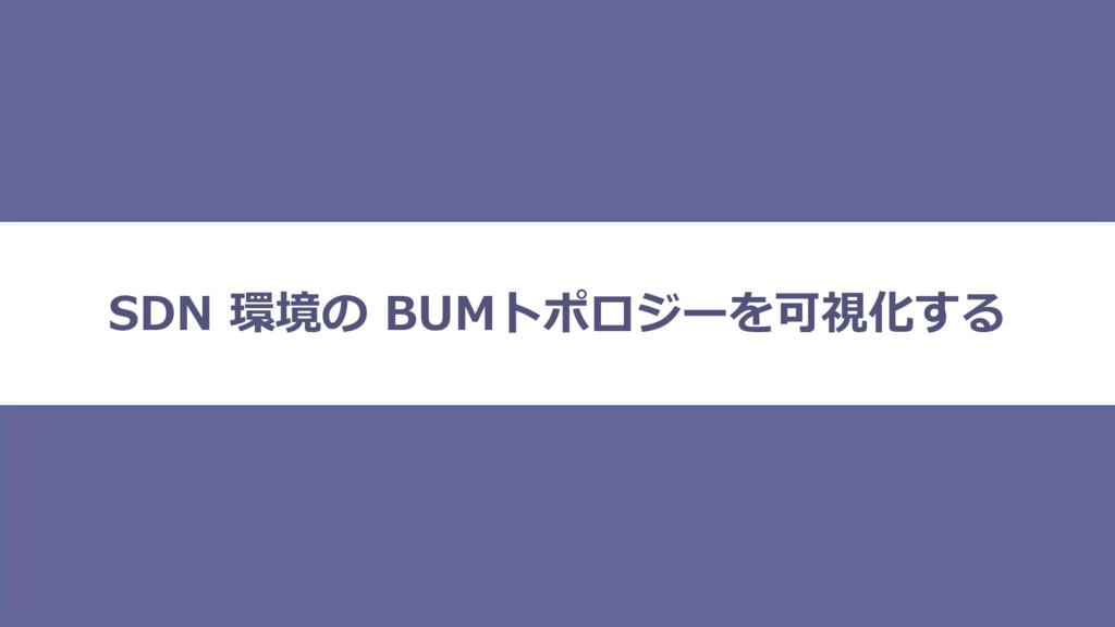 SDN 環境の BUMトポロジーを可視化する