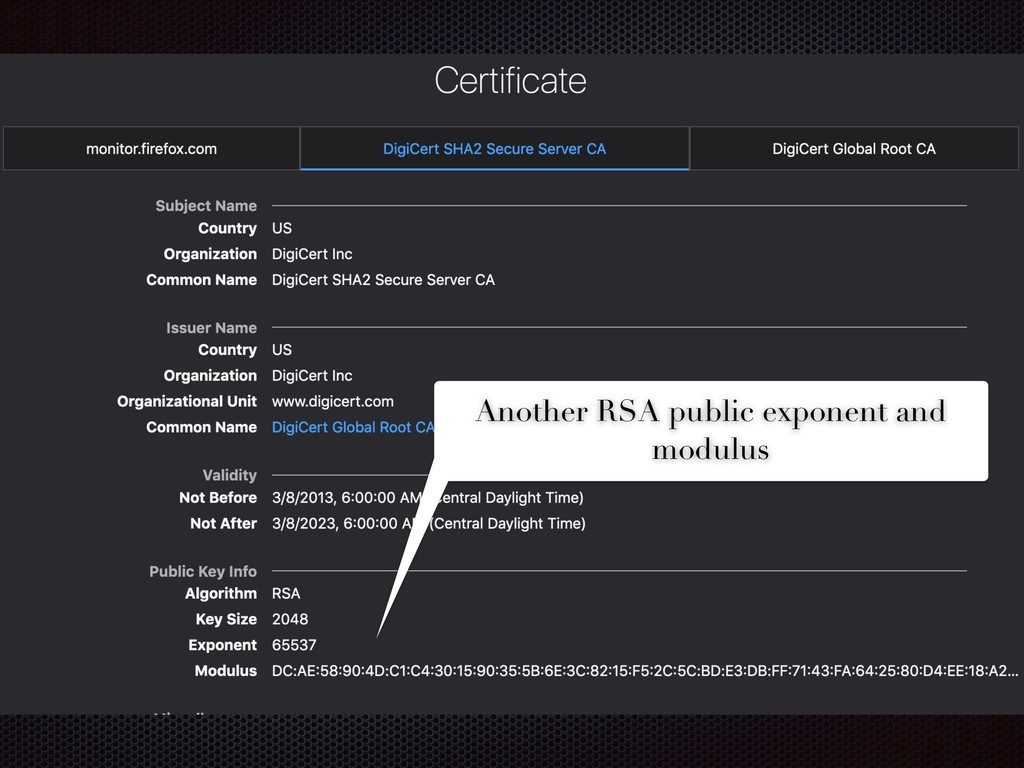 Another RSA public exponent and modulus