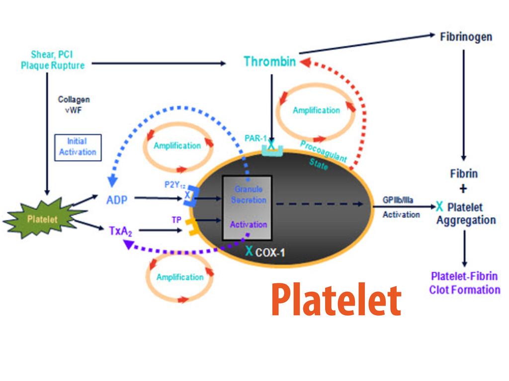 Platelet