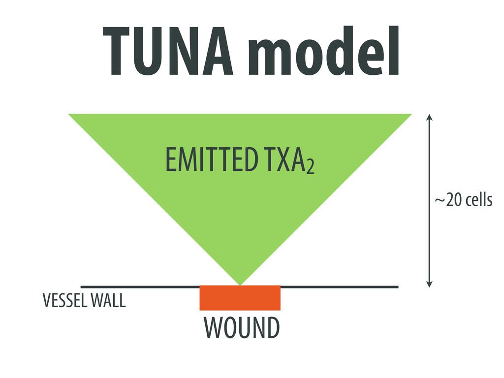 EMITTED TXA2 ~20 cells WOUND VESSEL WALL TUNA m...
