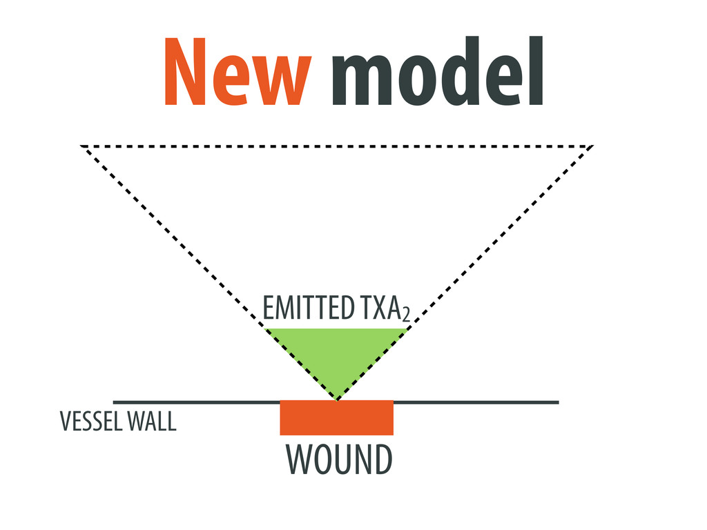 WOUND VESSEL WALL New model EMITTED TXA2