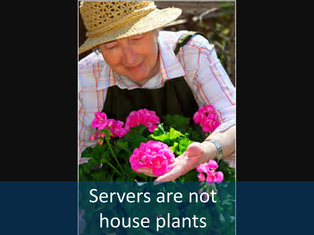 Servers are not house plants
