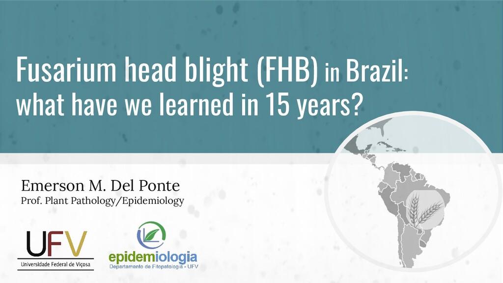 Fusarium head blight (FHB) in Brazil: what have...