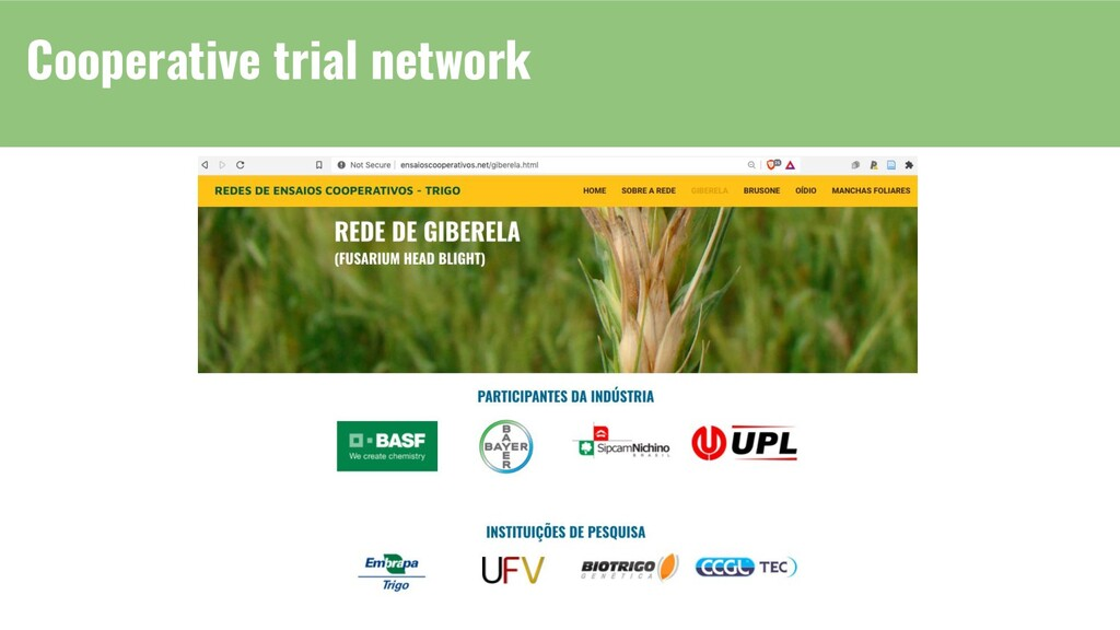 Cooperative trial network