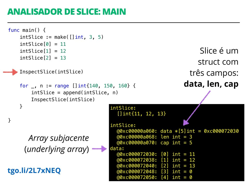 ANALISADOR DE SLICE: MAIN 49 intSlice: []int{11...