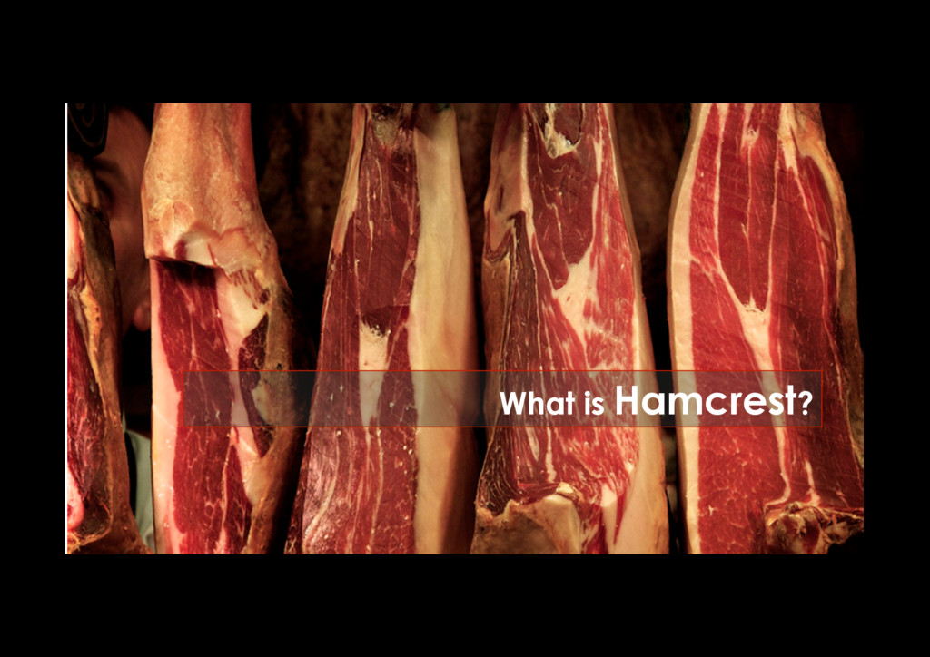 What is Hamcrest?