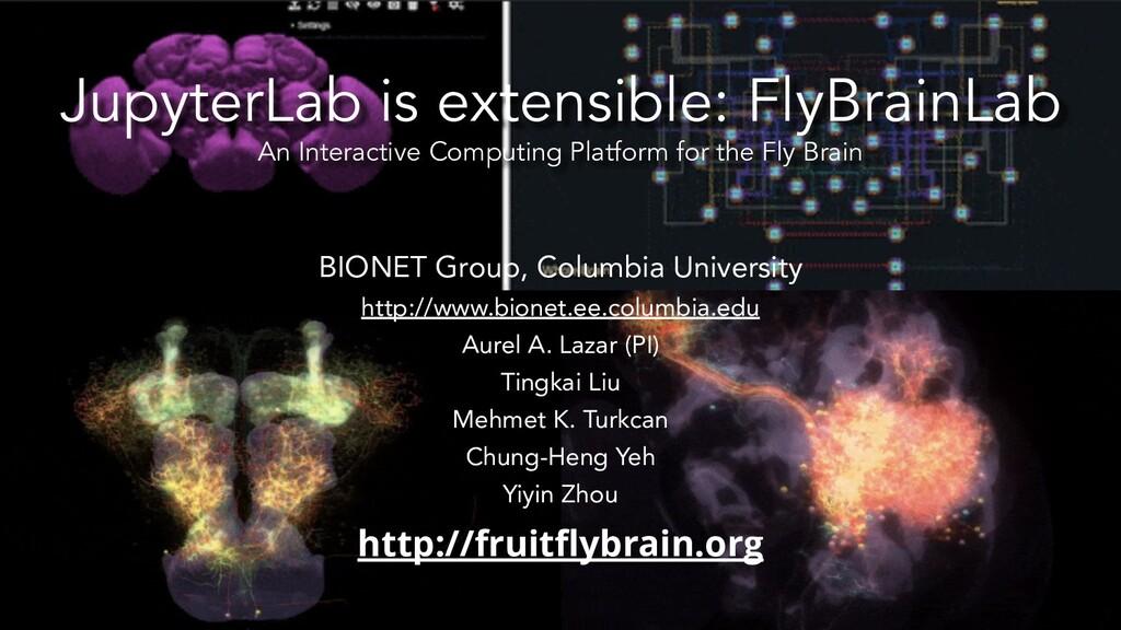 JupyterLab is extensible: FlyBrainLab An Intera...