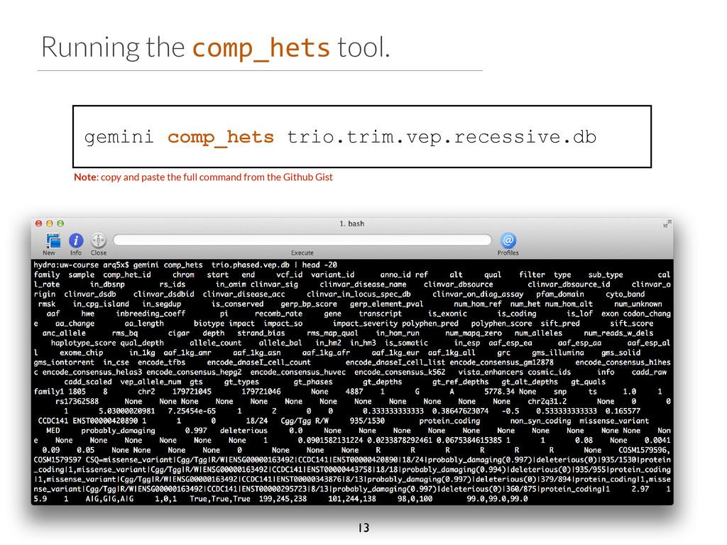 Running the comp_hets tool. gemini comp_hets tr...