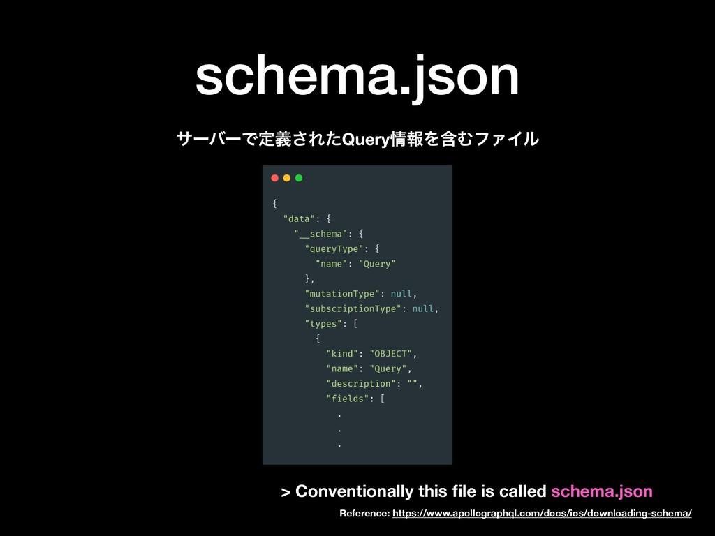schema.json αʔόʔͰఆٛ͞ΕͨQueryใΛؚΉϑΝΠϧ > Conventi...
