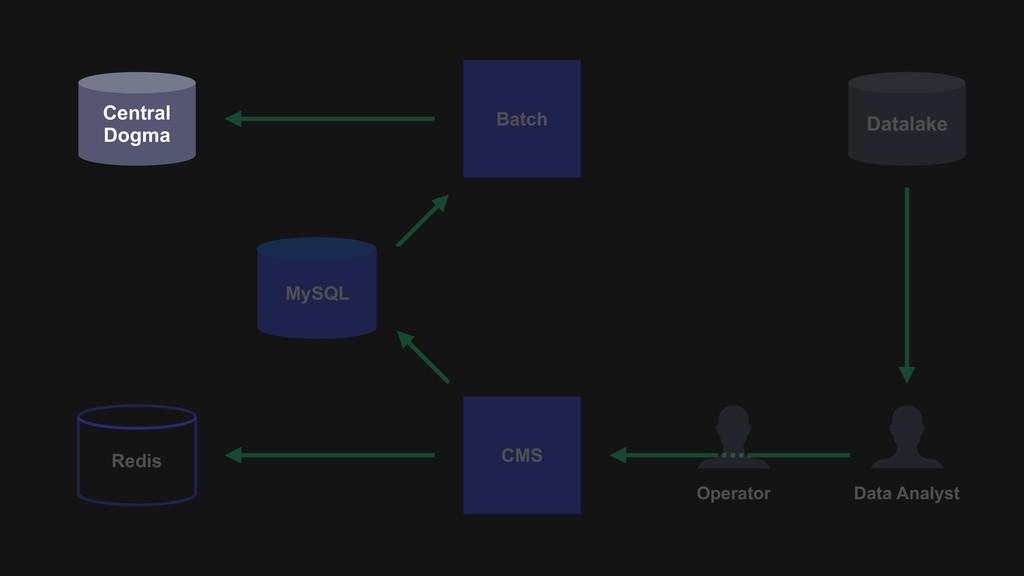Datalake Batch CMS Data Analyst Central Dogma R...