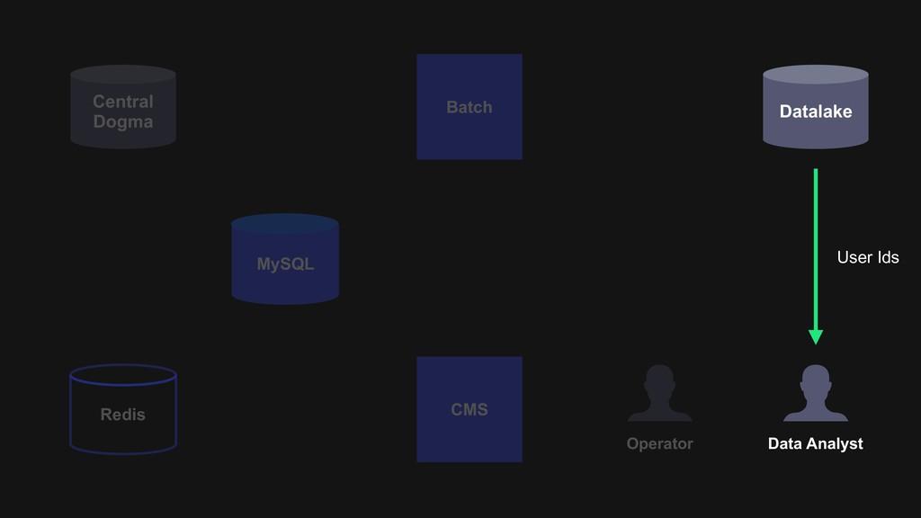 Datalake Batch Operator CMS Data Analyst Centra...