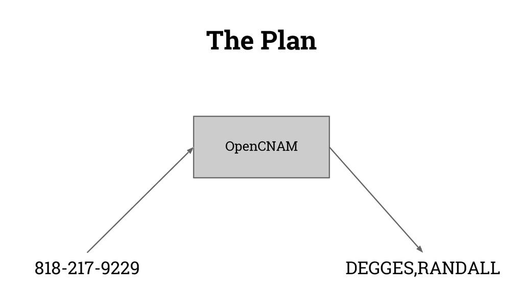 The Plan OpenCNAM DEGGES,RANDALL 818-217-9229