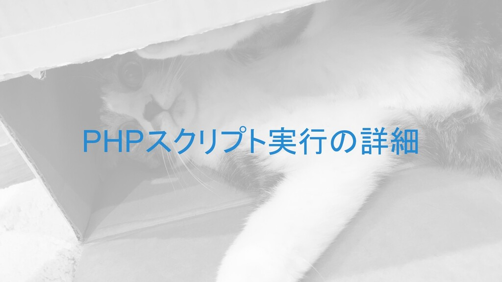 PHPスクリプト実行の詳細