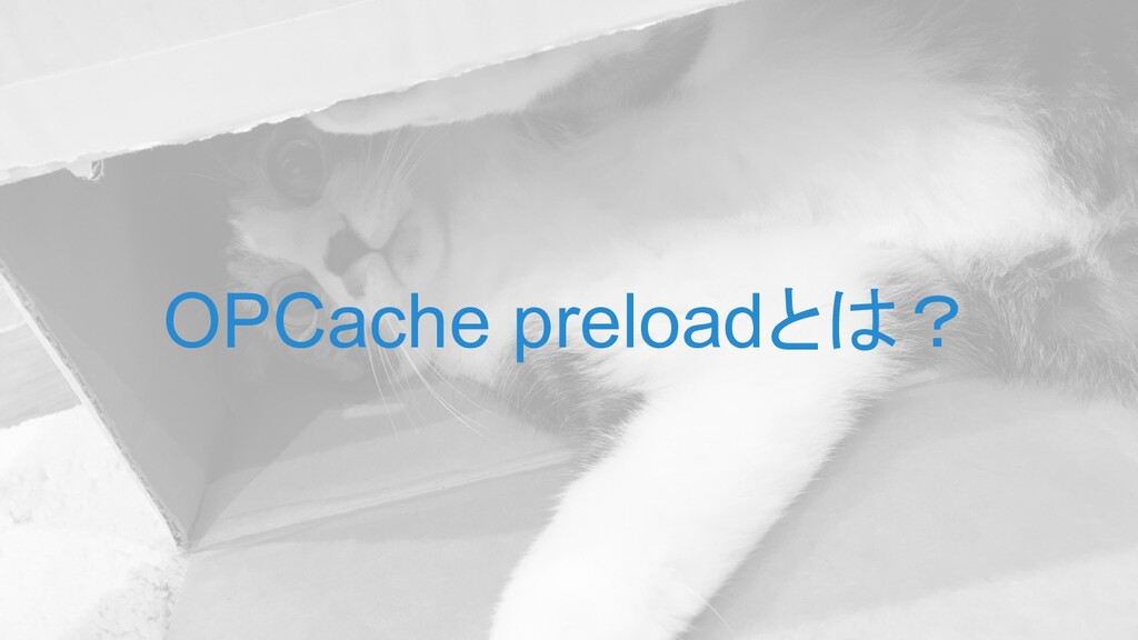 OPCache preloadとは?