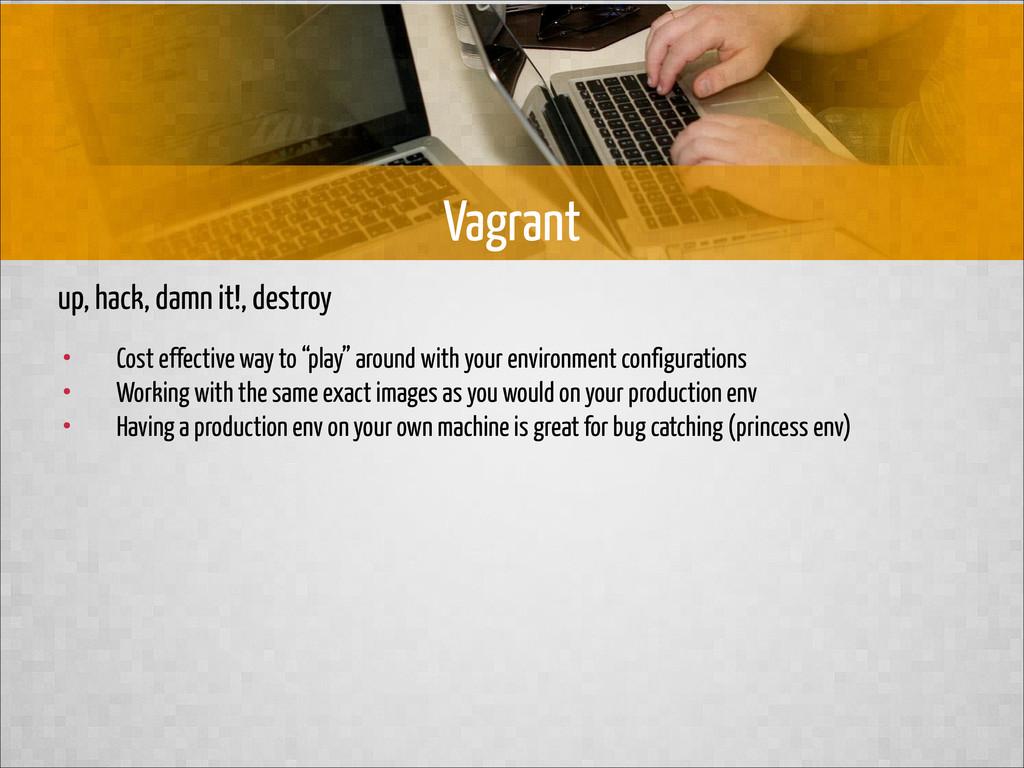up, hack, damn it!, destroy Vagrant • Cost effe...