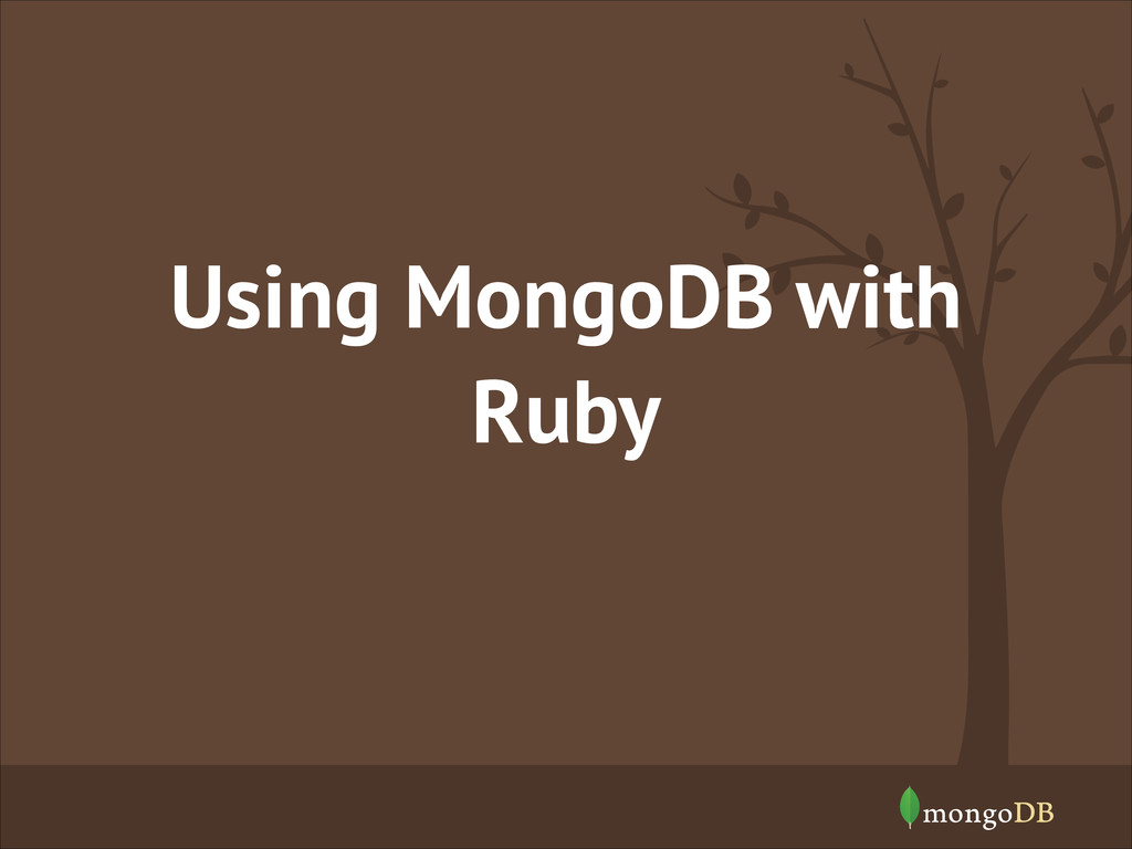 Using MongoDB with Ruby