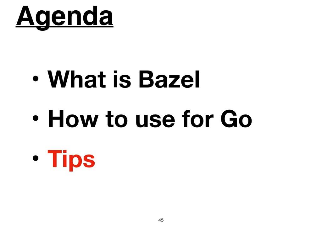 Agenda 45 ɾWhat is Bazel ɾHow to use for Go ɾTi...