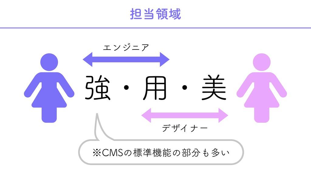 担当領域  強・用・美  エンジニア デザイナー ※CMSの標準機能の部分も多い
