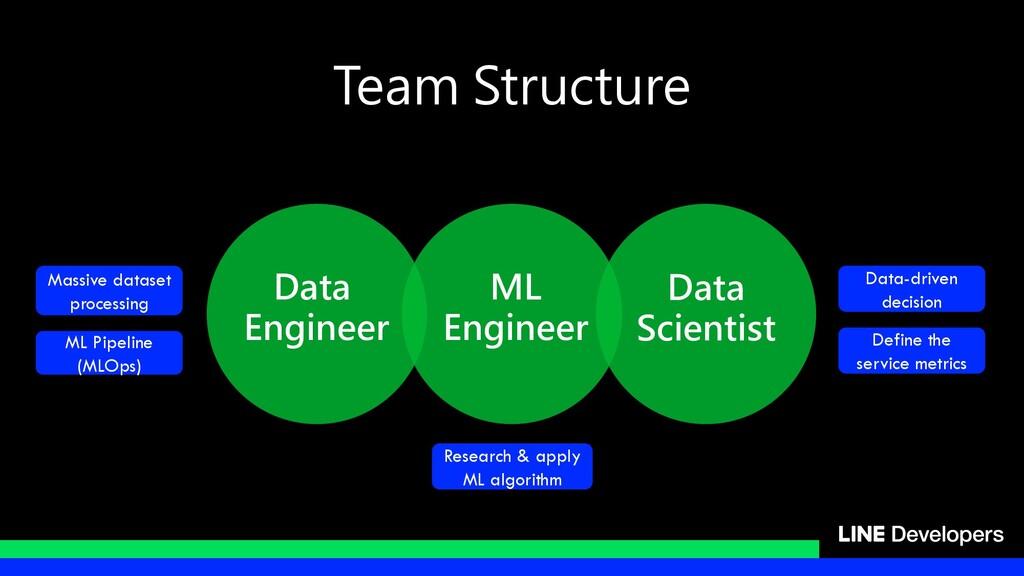 Data Engineer ML Engineer Data Scientist Team S...
