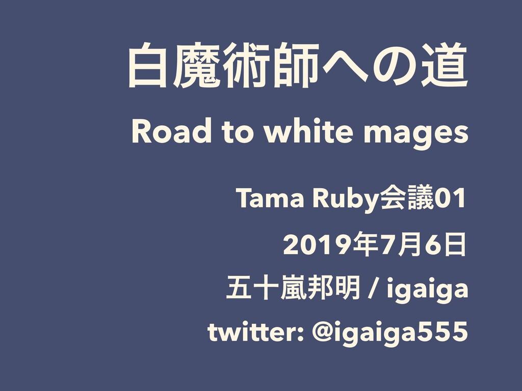 നຐज़ࢣͷಓ Road to white mages Tama Rubyձٞ01 2019...