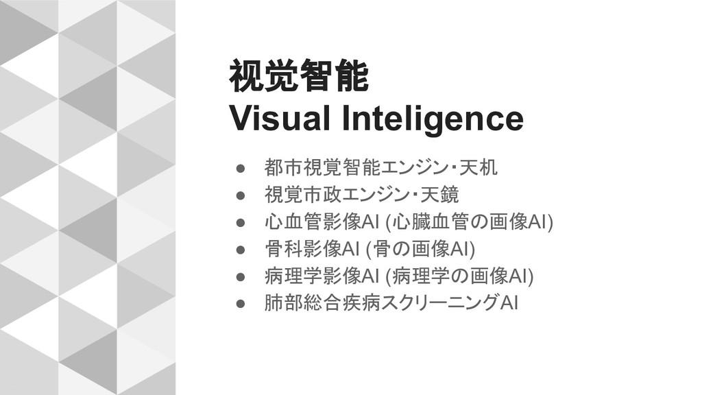 视觉智能 Visual Inteligence ● 都市視覚智能エンジン・天机 ● 視覚市政エ...