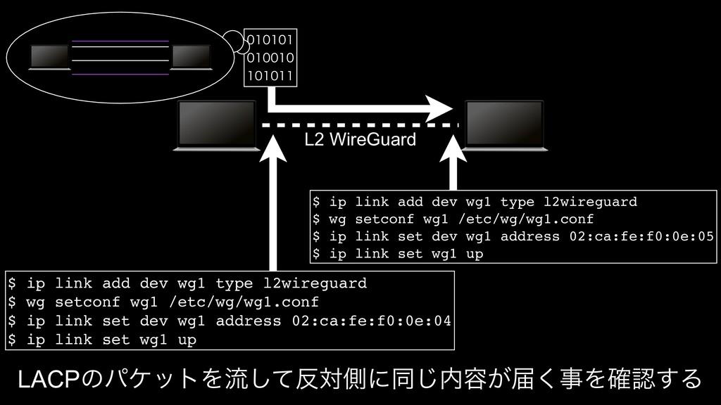 L2 WireGuard    $ ip link add...