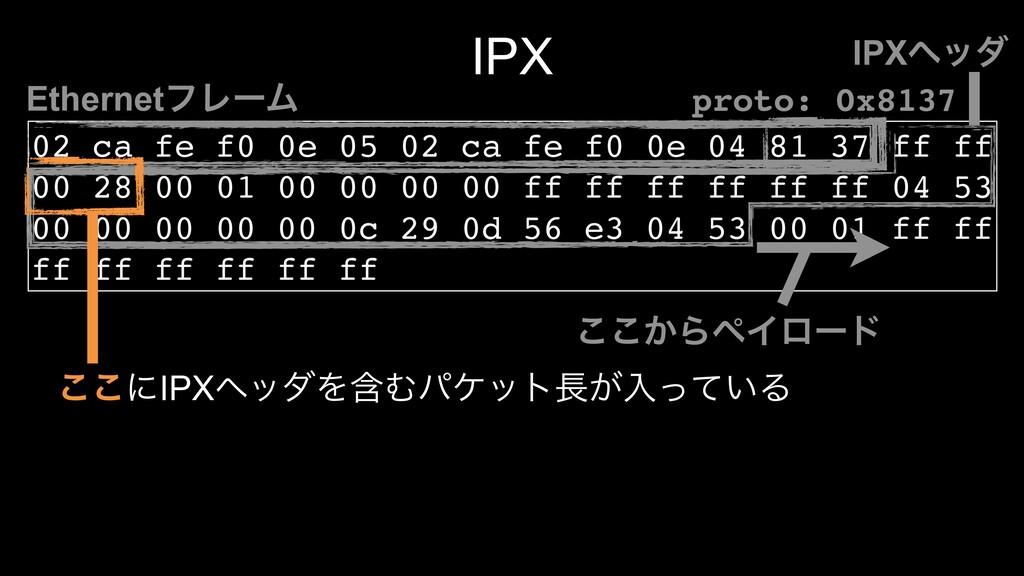 IPX 02 ca fe f0 0e 05 02 ca fe f0 0e 04 81 37 f...
