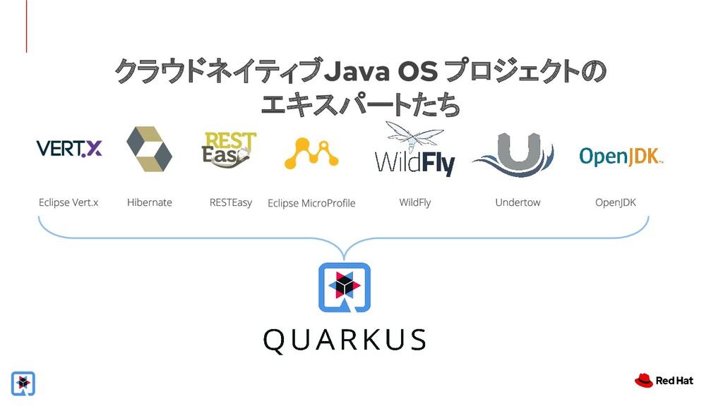 クラウドネイティブJava OS プロジェクトの エキスパートたち