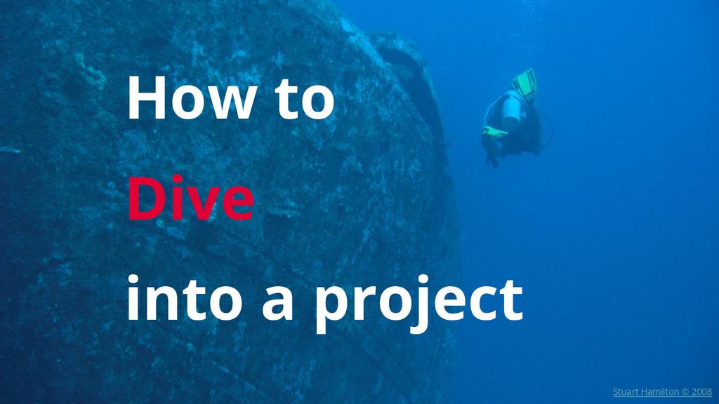 How to Dive into a project Stuart Hamilton © 20...