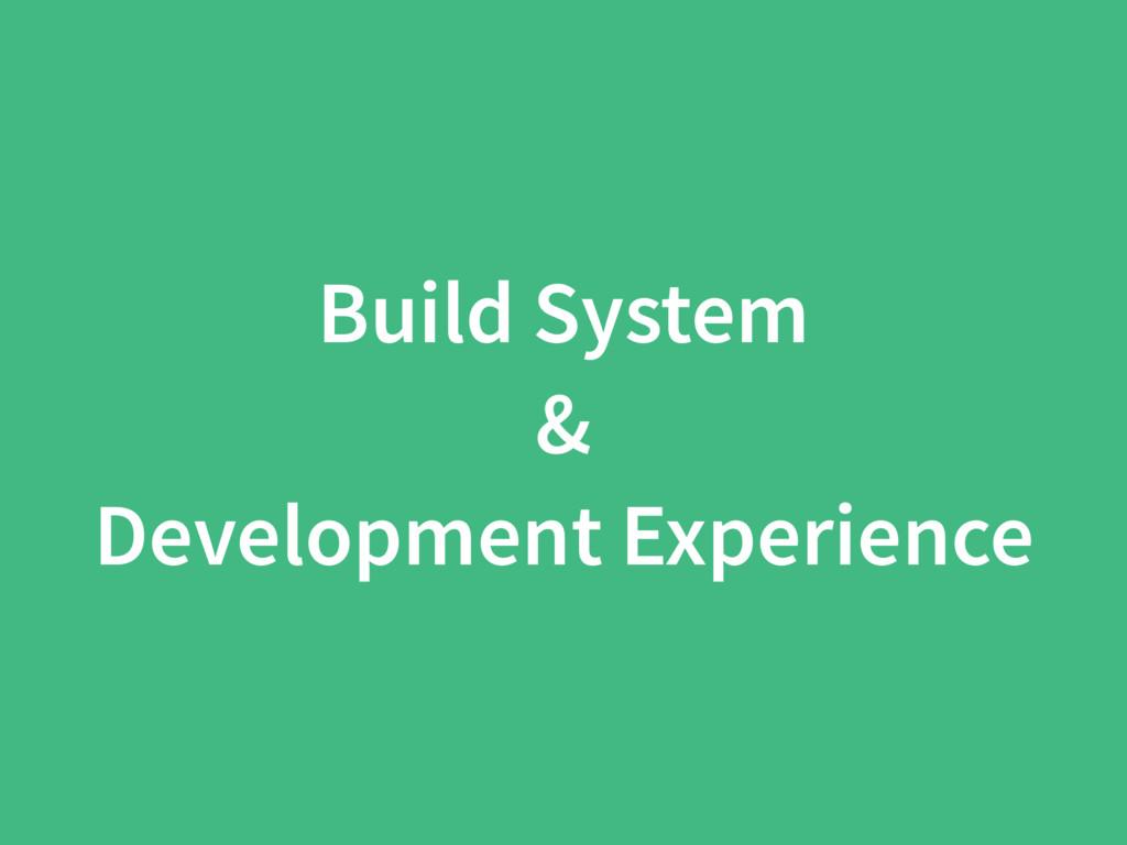 Build System & Development Experience