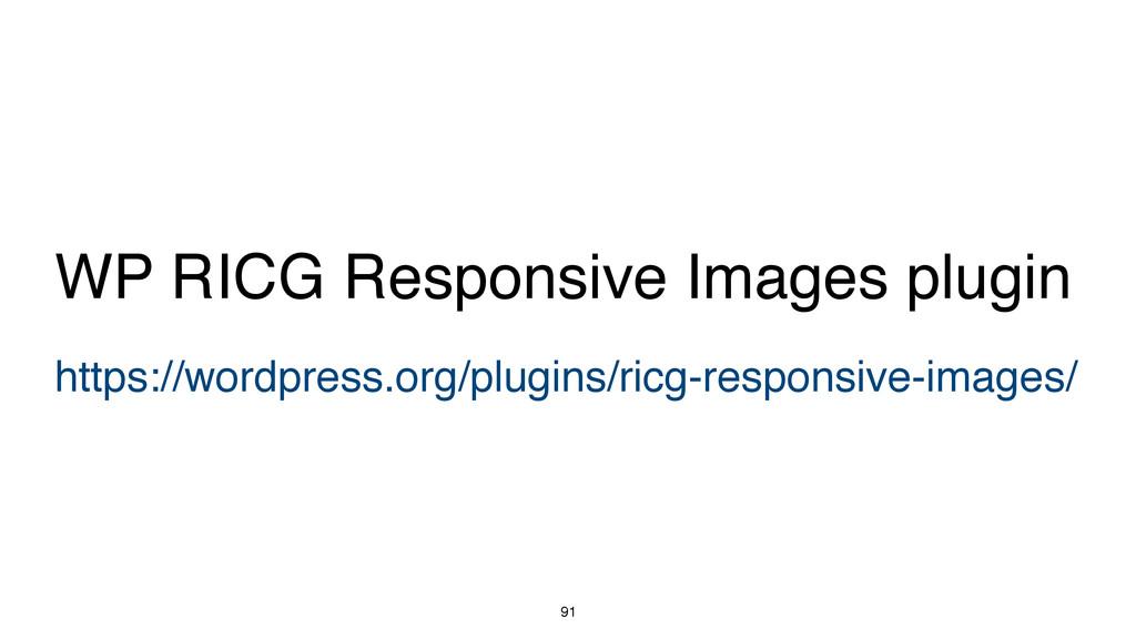 91 https://wordpress.org/plugins/ricg-responsiv...