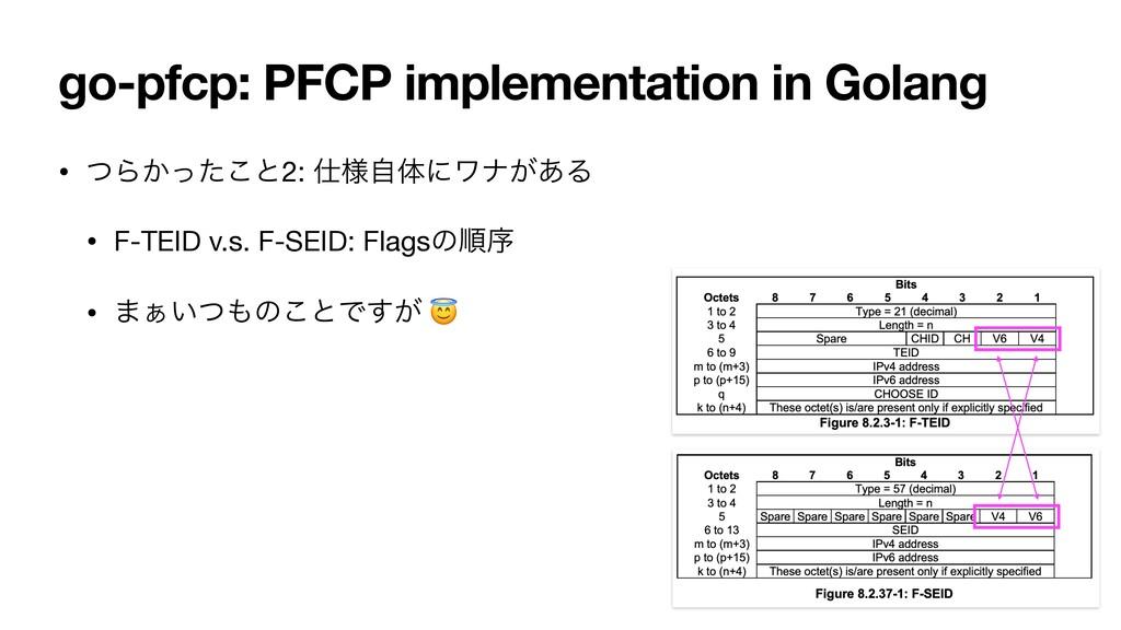 go-pfcp: PFCP implementation in Golang • ͭΒ͔ͬͨ͜...