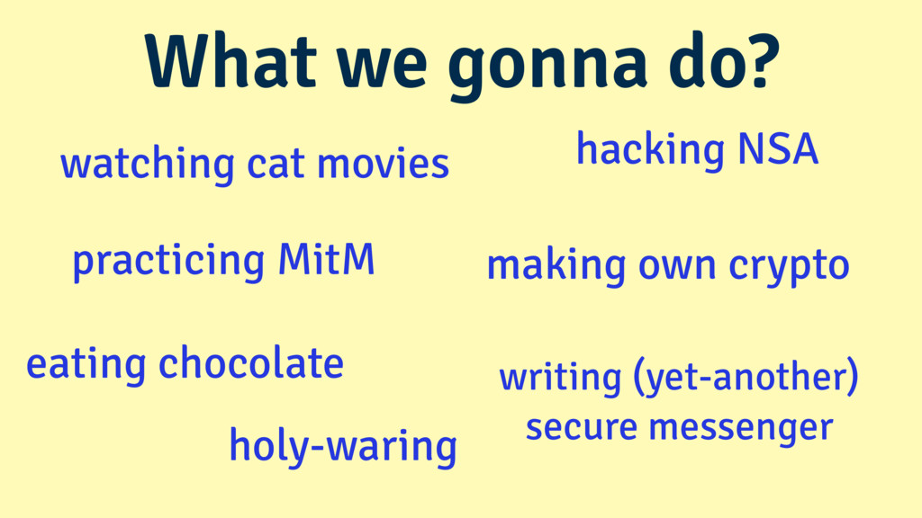 hacking NSA watching cat movies making own cryp...