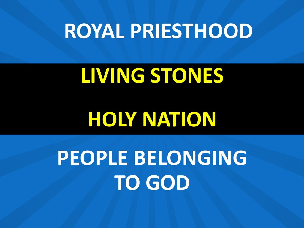 LIVING STONES HOLY NATION PEOPLE BELONGING TO G...