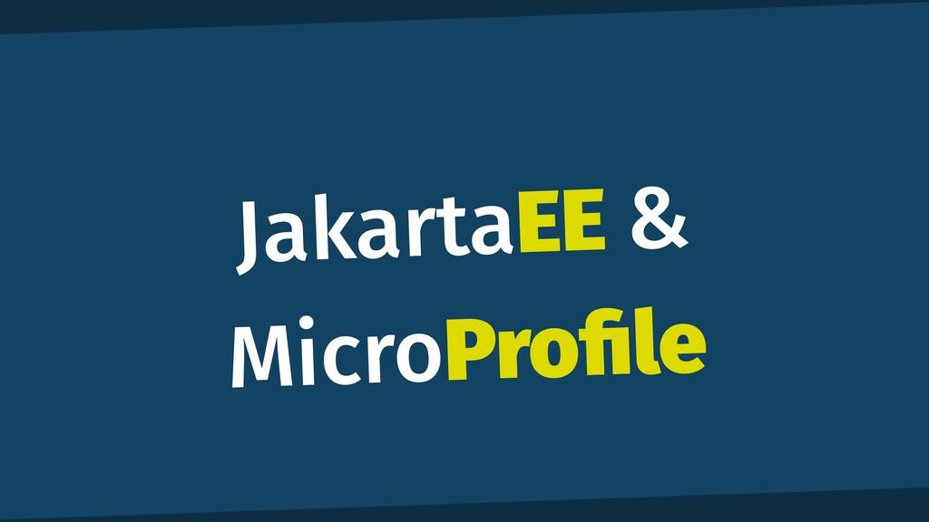JakartaEE & MicroPro fi le