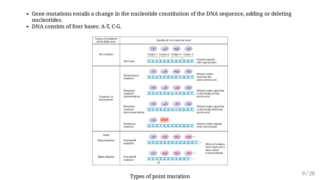 Gene mutations entails a change in the nucleoti...