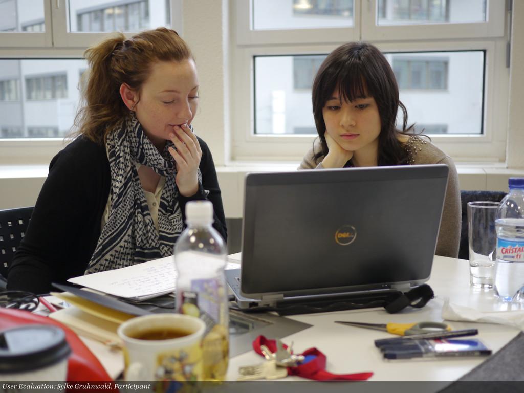 User Evaluation: Sylke Gruhnwald, Participant