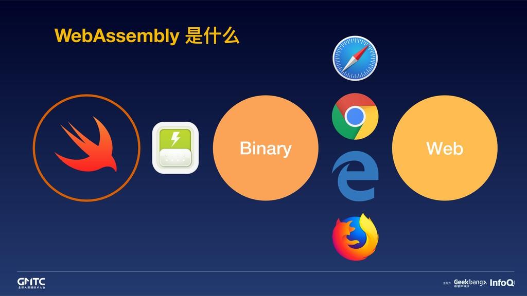 WebAssembly 是什什么 Binary Web