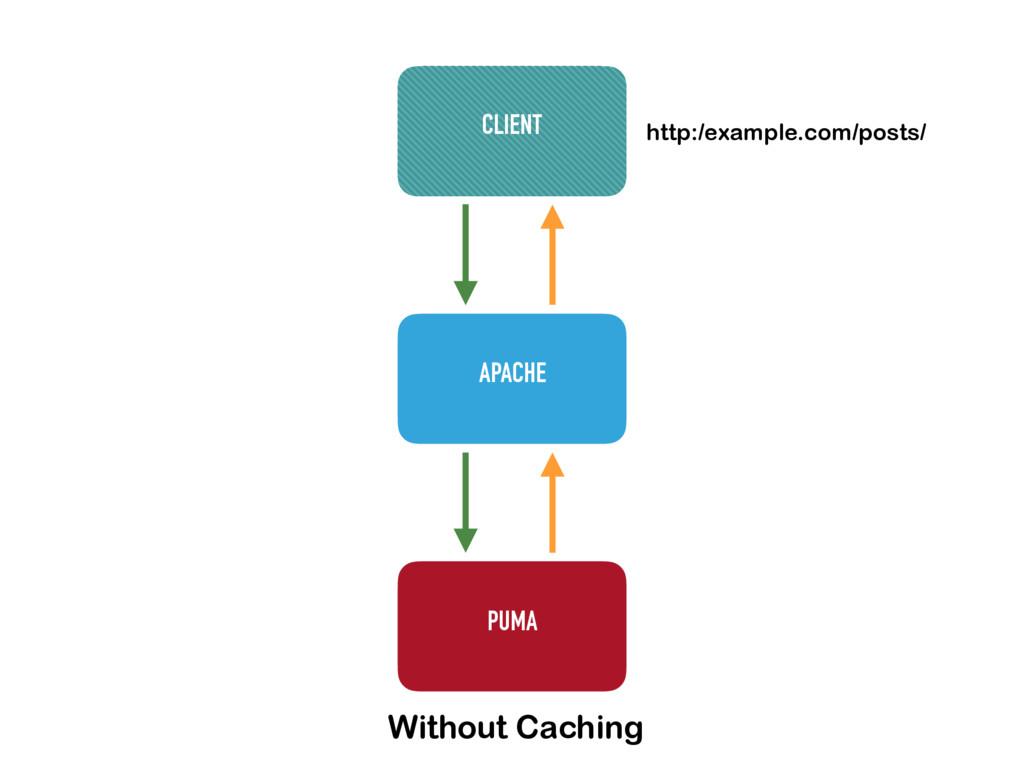 APACHE PUMA CLIENT http:/example.com/posts/ Wit...
