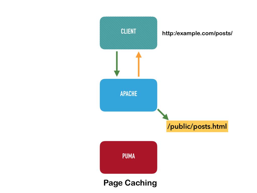 APACHE PUMA CLIENT http:/example.com/posts/ /pu...