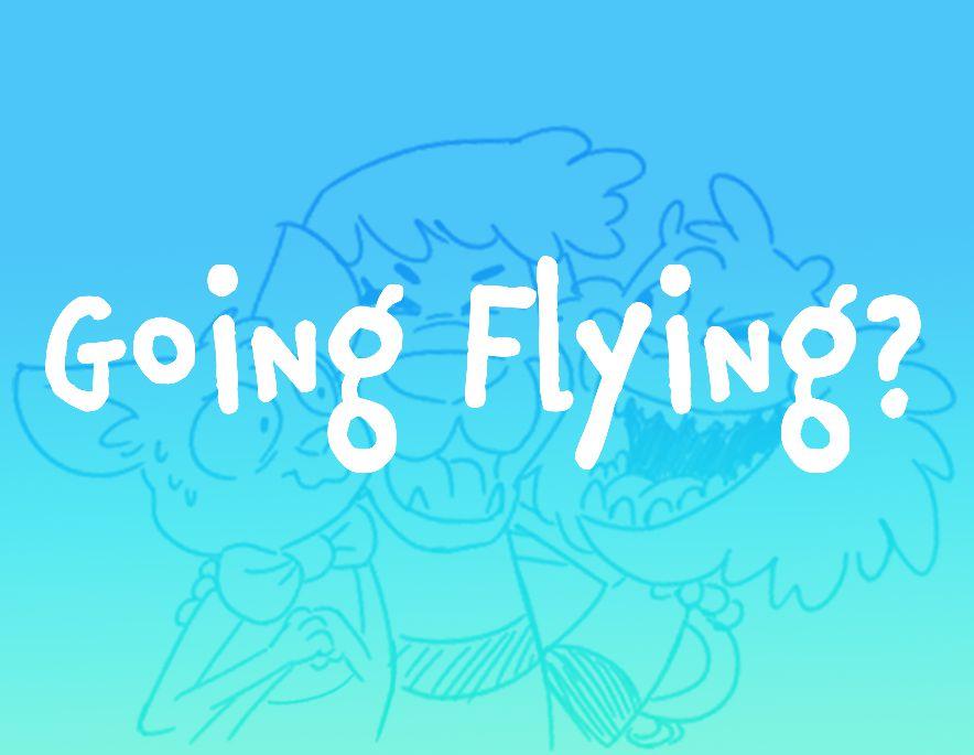 Going Flying?