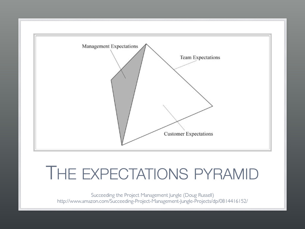 THE EXPECTATIONS PYRAMID Succeeding the Project...
