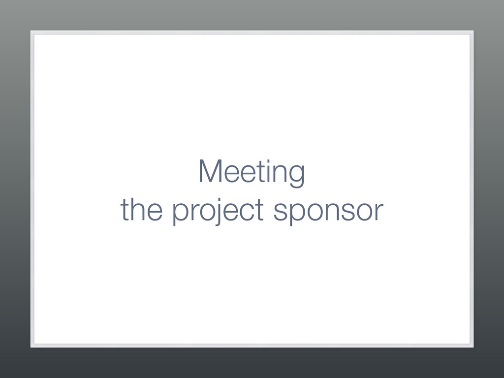 Meeting  the project sponsor