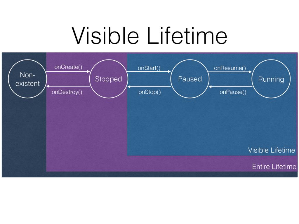 Entire Lifetime Visible Lifetime Visible Lifeti...